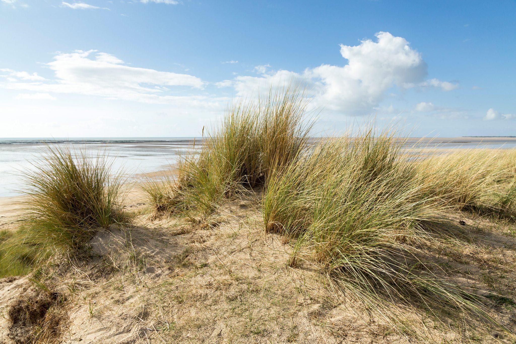 et dune